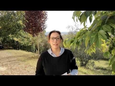 'La experiencia del Grand Tour: El viaje de Goya a Italia' de Raquel Gallego García