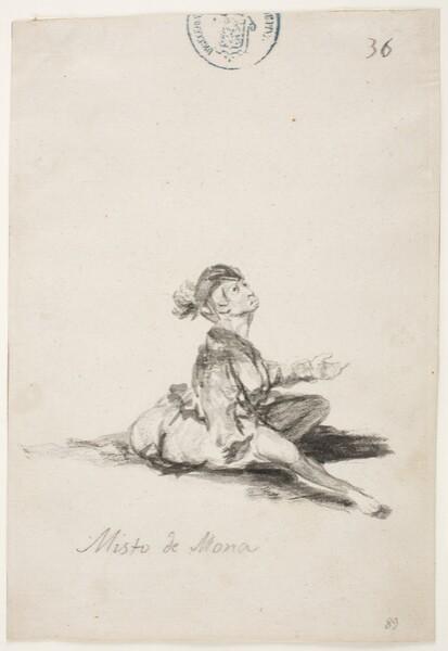 Misto de mona (C.36)