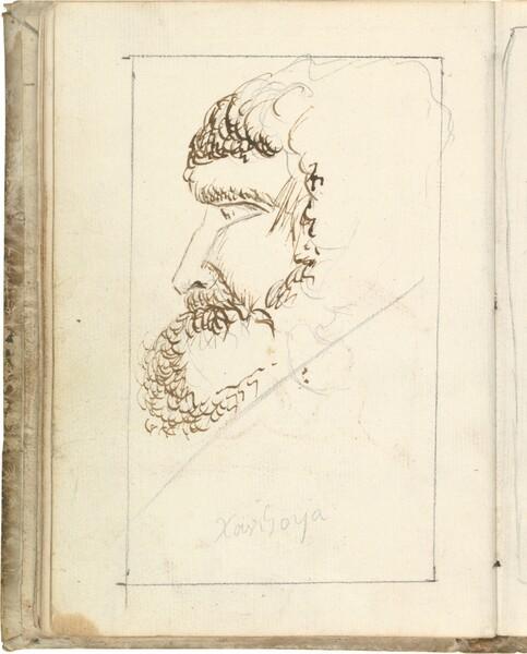 Cabeza barbada de perfil (atribuido a Javier Goya)