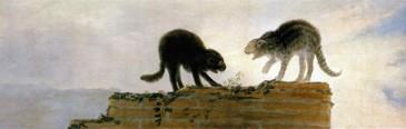 Dos gatos riñendo sobre una pared