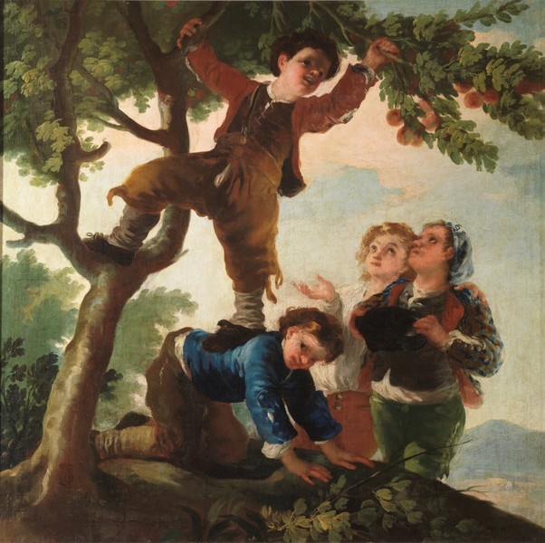 Boys Picking Fruit (Muchachos cogiendo fruta)